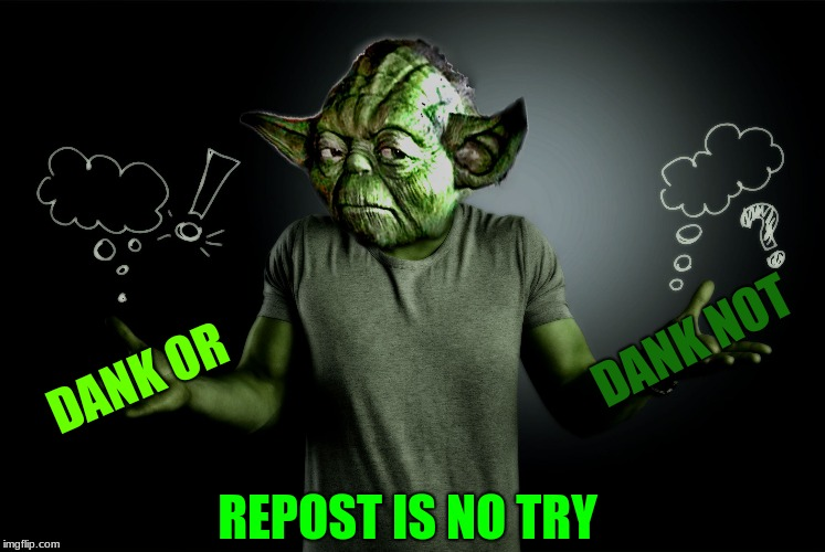 yoda shrug | DANK OR REPOST IS NO TRY DANK NOT | image tagged in yoda shrug | made w/ Imgflip meme maker
