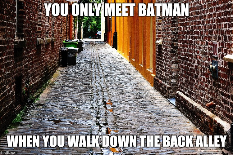 YOU ONLY MEET BATMAN WHEN YOU WALK DOWN THE BACK ALLEY | image tagged in city streets | made w/ Imgflip meme maker