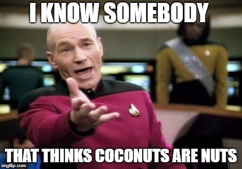 Picard WTF | I KNOW SOMEBODY THAT THINKS COCONUTS ARE NUTS | image tagged in memes,picard wtf,doctordoomsday180,coconut,nuts,nut | made w/ Imgflip meme maker