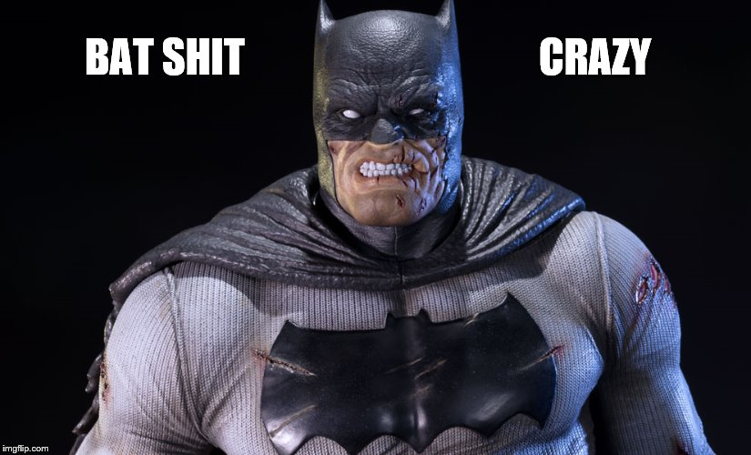 BAT SHIT CRAZY | made w/ Imgflip meme maker