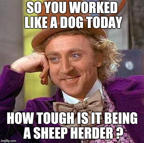 Old sayings , you gotta love 'em | SO YOU WORKED LIKE A DOG TODAY HOW TOUGH IS IT BEING A SHEEP HERDER ? | image tagged in memes,creepy condescending wonka,back to the future,say what,what if i told you | made w/ Imgflip meme maker