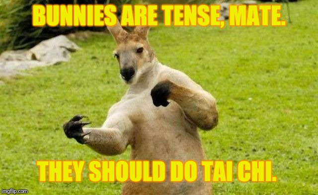 BUNNIES ARE TENSE, MATE. THEY SHOULD DO TAI CHI. | made w/ Imgflip meme maker
