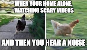 running chicken | WHEN YOUR HOME ALONE, WATCHING SCARY VIDEOS AND THEN YOU HEAR A NOISE | image tagged in running chicken | made w/ Imgflip meme maker