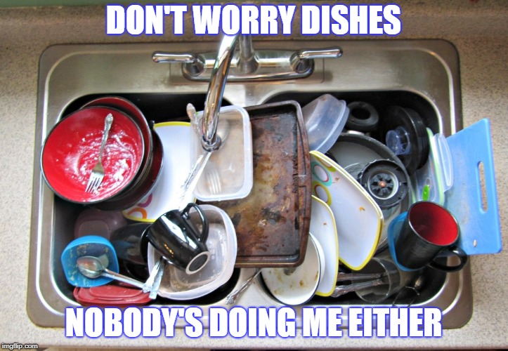 Dating life | DON'T WORRY DISHES NOBODY'S DOING ME EITHER | image tagged in funny,funny memes,dating,relationships | made w/ Imgflip meme maker