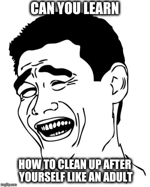 Yao Ming Meme | CAN YOU LEARN HOW TO CLEAN UP AFTER YOURSELF LIKE AN ADULT | image tagged in memes,yao ming | made w/ Imgflip meme maker