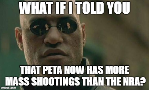 Matrix Morpheus Meme | WHAT IF I TOLD YOU THAT PETA NOW HAS MORE MASS SHOOTINGS THAN THE NRA? | image tagged in memes,matrix morpheus | made w/ Imgflip meme maker