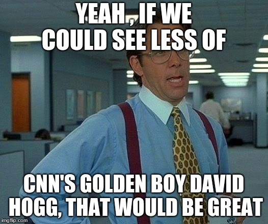 That Would Be Great Meme | YEAH , IF WE COULD SEE LESS OF CNN'S GOLDEN BOY DAVID HOGG, THAT WOULD BE GREAT | image tagged in memes,that would be great | made w/ Imgflip meme maker