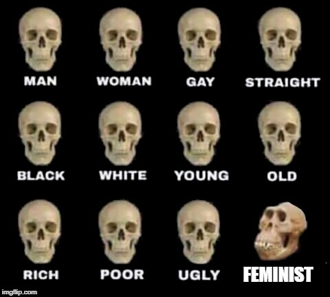 idiot skull | FEMINIST | image tagged in idiot skull | made w/ Imgflip meme maker
