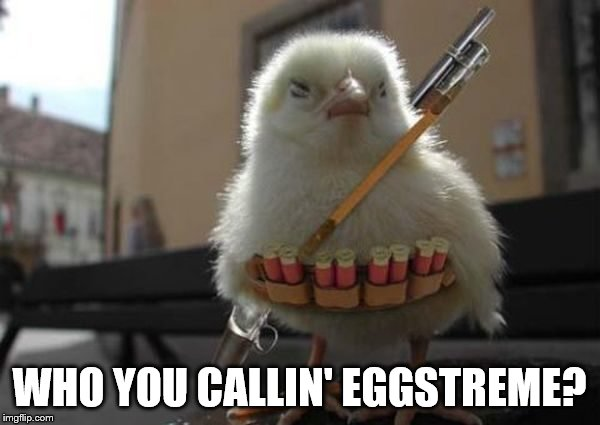 WHO YOU CALLIN' EGGSTREME? | made w/ Imgflip meme maker