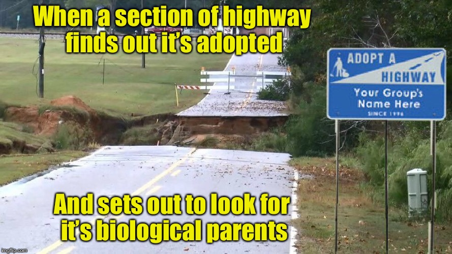 At what age do you tell a highway it's adopted? | When a section of highway finds out it's adopted And sets out to look for it's biological parents | image tagged in memes,adopted,highway,road signs | made w/ Imgflip meme maker