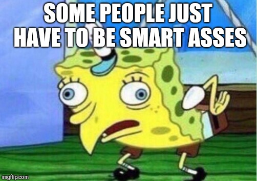 Mocking Spongebob Meme | SOME PEOPLE JUST HAVE TO BE SMART ASSES | image tagged in memes,mocking spongebob | made w/ Imgflip meme maker