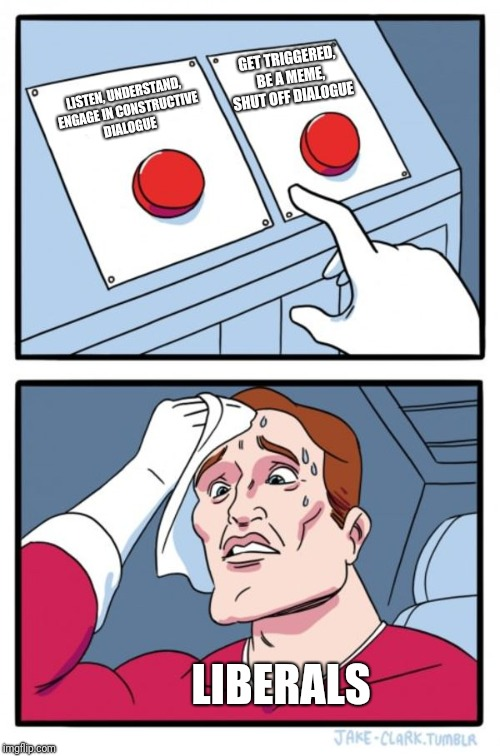 Two Buttons Meme | LISTEN, UNDERSTAND, ENGAGE IN CONSTRUCTIVE DIALOGUE GET TRIGGERED, BE A MEME, SHUT OFF DIALOGUE LIBERALS | image tagged in memes,two buttons | made w/ Imgflip meme maker