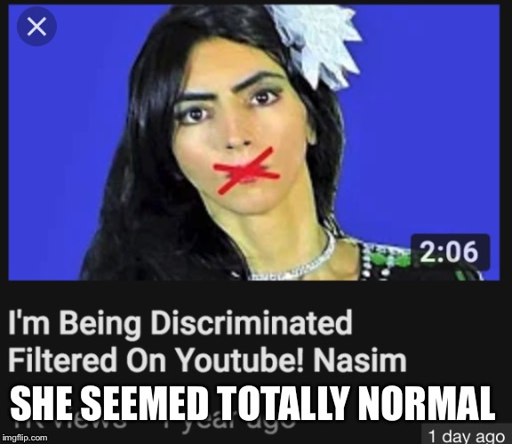 SHE SEEMED TOTALLY NORMAL | image tagged in the youtube shooter | made w/ Imgflip meme maker