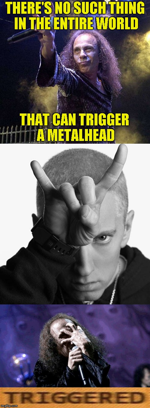 Ugh... | THERE'S NO SUCH THING IN THE ENTIRE WORLD THAT CAN TRIGGER A METALHEAD | image tagged in memes,powermetalhead,metalhead,triggered,eminem,facepalm | made w/ Imgflip meme maker