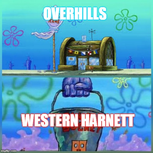 krusty krab vs chum bucket  | OVERHILLS WESTERN HARNETT | image tagged in krusty krab vs chum bucket | made w/ Imgflip meme maker