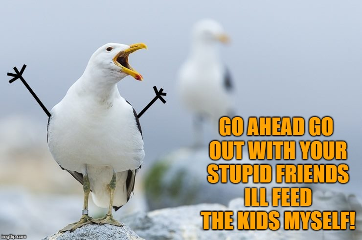 go ahead go | GO AHEAD GO OUT WITH YOUR STUPID FRIENDS ILL FEED THE KIDS MYSELF! | image tagged in seagull,stick figure,funny,nagging wife | made w/ Imgflip meme maker