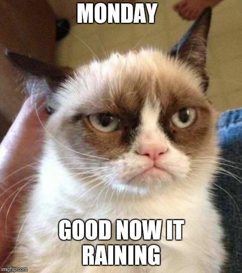 Grumpy Cat Reverse | MONDAY GOOD NOW IT  RAINING | image tagged in memes,grumpy cat reverse,grumpy cat | made w/ Imgflip meme maker