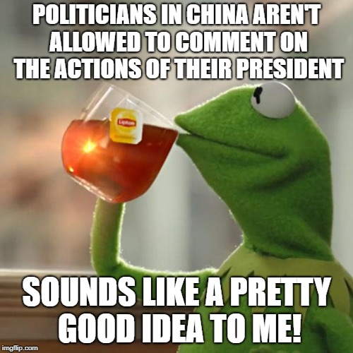But Thats None Of My Business Meme | POLITICIANS IN CHINA AREN'T ALLOWED TO COMMENT ON THE ACTIONS OF THEIR PRESIDENT SOUNDS LIKE A PRETTY GOOD IDEA TO ME! | image tagged in memes,but thats none of my business,kermit the frog | made w/ Imgflip meme maker