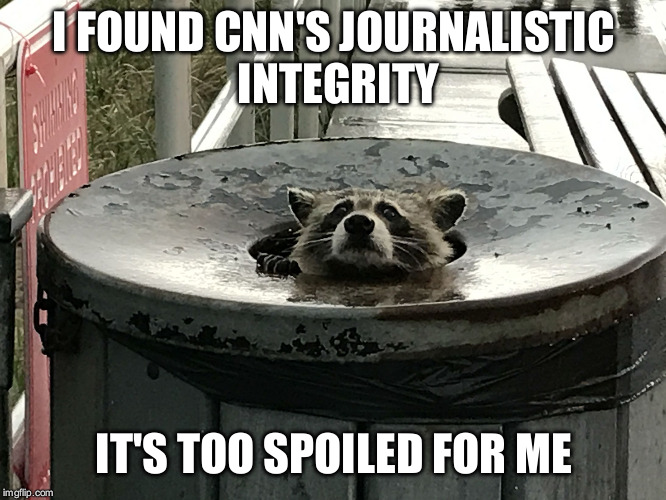 Trash panda treasure | I FOUND CNN'S JOURNALISTIC INTEGRITY IT'S TOO SPOILED FOR ME | image tagged in trash panda,cnn,journalism | made w/ Imgflip meme maker