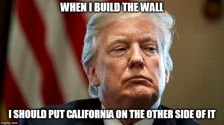 WHEN I BUILD THE WALL I SHOULD PUT CALIFORNIA ON THE OTHER SIDE OF IT | made w/ Imgflip meme maker
