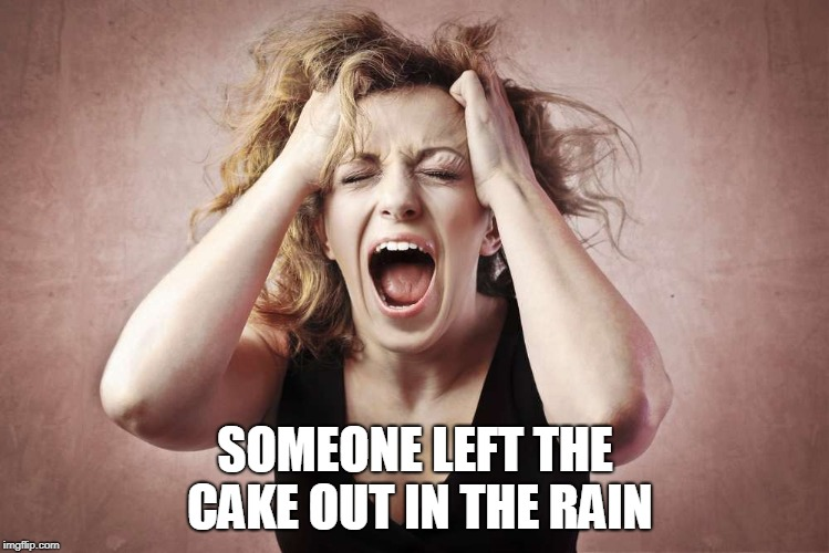 And She Can't Take It | SOMEONE LEFT THE CAKE OUT IN THE RAIN | image tagged in desperate,panic | made w/ Imgflip meme maker