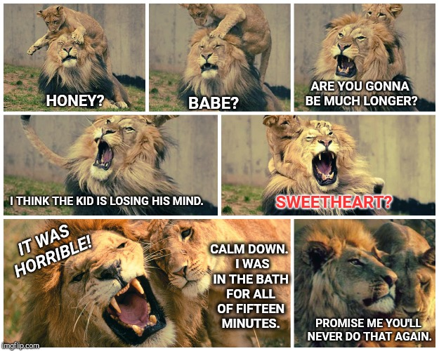 Oh For Pete's Sake. | HONEY? BABE? ARE YOU GONNA BE MUCH LONGER? SWEETHEART? I THINK THE KID IS LOSING HIS MIND. CALM DOWN.  I WAS IN THE BATH FOR ALL OF FIFTEEN  | image tagged in funny lion,lioness,father and son,that moment when,moms,crybaby | made w/ Imgflip meme maker