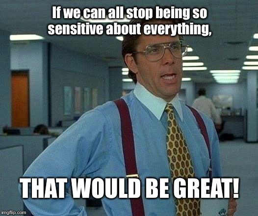 That Would Be Great Meme | If we can all stop being so sensitive about everything, THAT WOULD BE GREAT! | image tagged in memes,that would be great | made w/ Imgflip meme maker