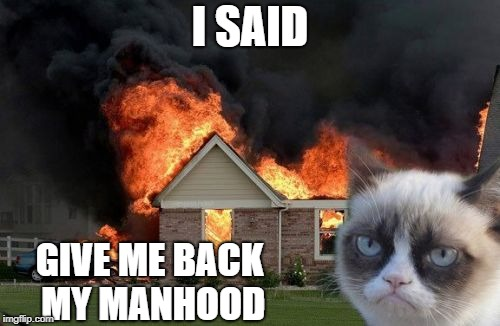 I SAID GIVE ME BACK MY MANHOOD | image tagged in grumpy cat | made w/ Imgflip meme maker