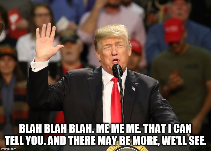 Trump Speaks but Says Nothing | BLAH BLAH BLAH. ME ME ME. THAT I CAN TELL YOU. AND THERE MAY BE MORE, WE'LL SEE. | image tagged in trump speech,trump speaks,trump says nothing and know nothing | made w/ Imgflip meme maker