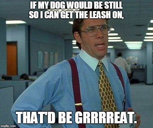 That Would Be Great Meme | IF MY DOG WOULD BE STILL SO I CAN GET THE LEASH ON, THAT'D BE GRRRREAT. | image tagged in memes,that would be great | made w/ Imgflip meme maker