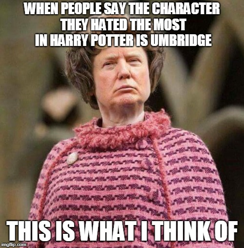 Trump Umbridge Meme | WHEN PEOPLE SAY THE CHARACTER THEY HATED THE MOST IN HARRY POTTER IS UMBRIDGE THIS IS WHAT I THINK OF | image tagged in trump umbridge | made w/ Imgflip meme maker