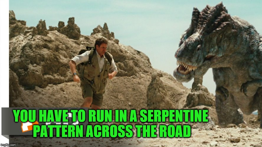 YOU HAVE TO RUN IN A SERPENTINE PATTERN ACROSS THE ROAD | made w/ Imgflip meme maker