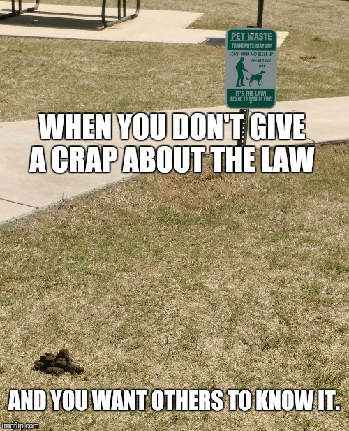 WHEN YOU DON'T GIVE A CRAP ABOUT THE LAW AND YOU WANT OTHERS TO KNOW IT. | image tagged in seriously just pick it up | made w/ Imgflip meme maker