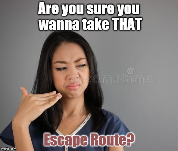 Are you sure you wanna take THAT Escape Route? | made w/ Imgflip meme maker