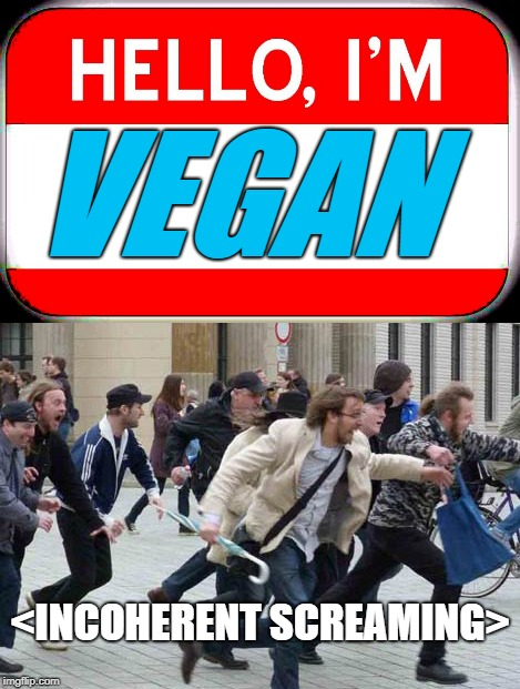 Next time someone tells me they're a vegan, you know what I'm doing! | VEGAN <INCOHERENT SCREAMING> | image tagged in vegan,run away,dank memes,shooter | made w/ Imgflip meme maker