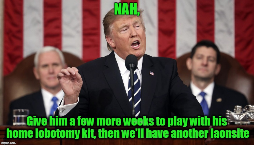 Trump State of the Union | NAH, Give him a few more weeks to play with his home lobotomy kit, then we'll have another laonsite | image tagged in trump state of the union | made w/ Imgflip meme maker