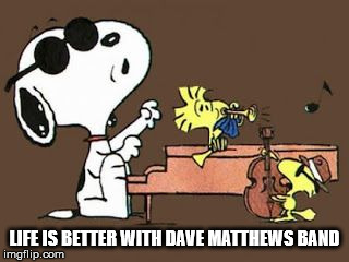 LIFE IS BETTER WITH DMB | LIFE IS BETTER WITH DAVE MATTHEWS BAND | image tagged in dmb,dave matthews band,snoopy,peanuts,woodstock,music | made w/ Imgflip meme maker