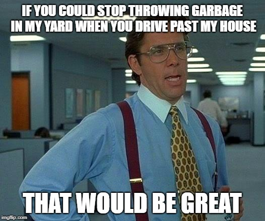 Stop Littering  | IF YOU COULD STOP THROWING GARBAGE IN MY YARD WHEN YOU DRIVE PAST MY HOUSE THAT WOULD BE GREAT | image tagged in memes,that would be great,trash,fast food | made w/ Imgflip meme maker