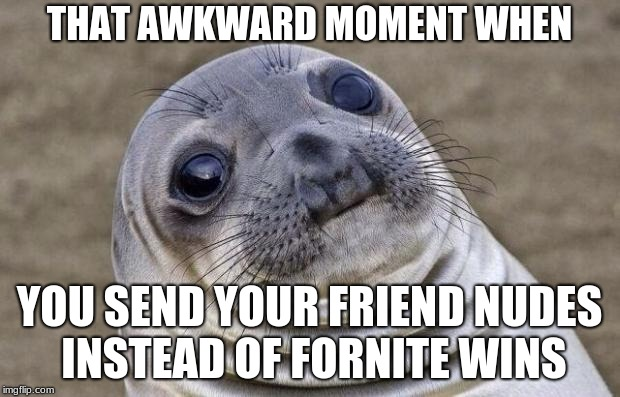 Awkward Moment Sealion Meme | THAT AWKWARD MOMENT WHEN YOU SEND YOUR FRIEND NUDES INSTEAD OF FORNITE WINS | image tagged in memes,awkward moment sealion | made w/ Imgflip meme maker