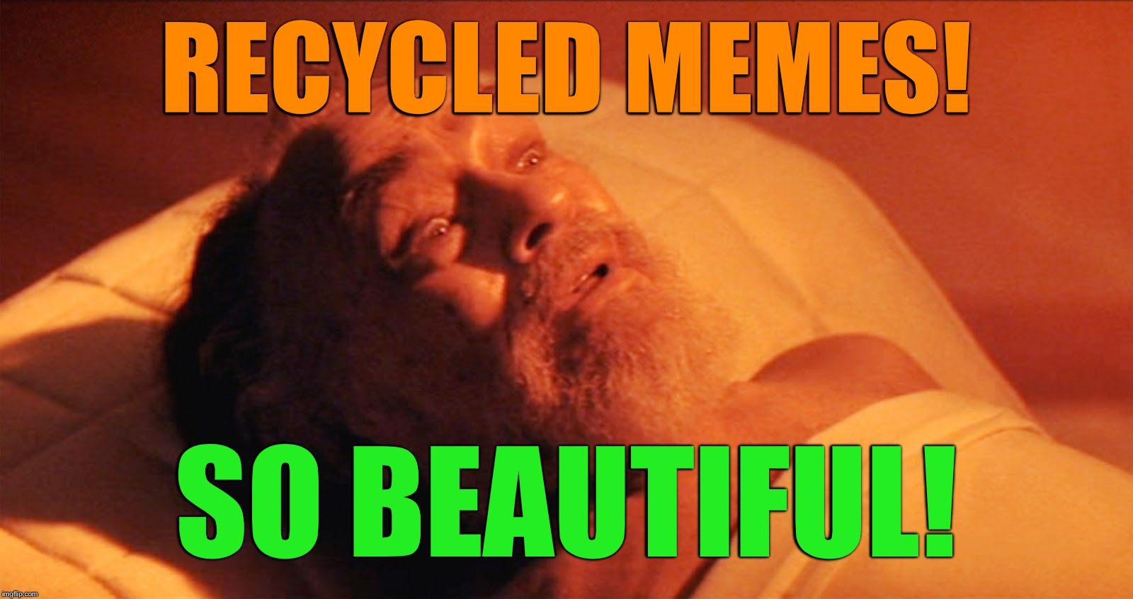 Recycled Memes! | RECYCLED MEMES! SO BEAUTIFUL! | image tagged in recycled memes,memes,soylent green | made w/ Imgflip meme maker