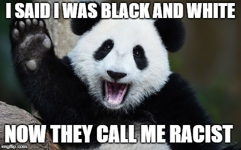 The hard truth | I SAID I WAS BLACK AND WHITE NOW THEY CALL ME RACIST | image tagged in panda,memes,racist,truth,black and white,funny | made w/ Imgflip meme maker