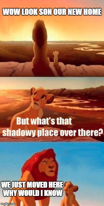 Simba Shadowy Place Meme | WOW LOOK SON OUR NEW HOME WE JUST MOVED HERE WHY WOULD I KNOW | image tagged in memes,simba shadowy place | made w/ Imgflip meme maker