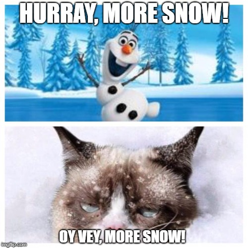 No more snow  | HURRAY, MORE SNOW! OY VEY, MORE SNOW! | image tagged in no more snow | made w/ Imgflip meme maker