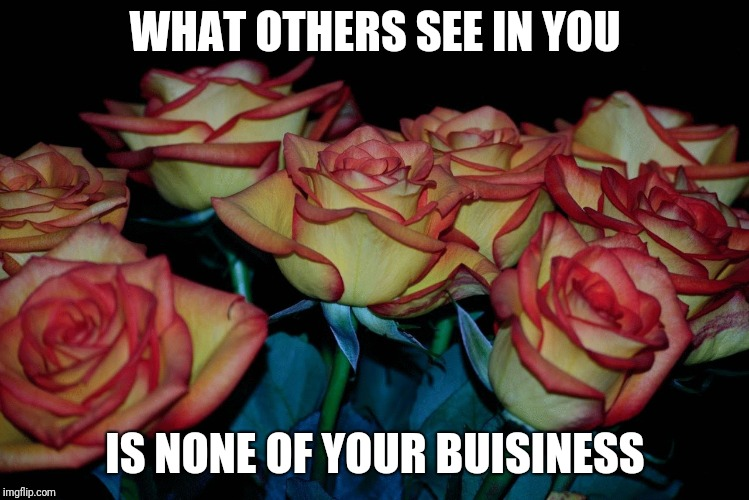WHAT OTHERS SEE IN YOU IS NONE OF YOUR BUISINESS | image tagged in rose colored roses | made w/ Imgflip meme maker