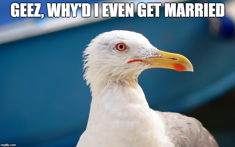 GEEZ, WHY'D I EVEN GET MARRIED | made w/ Imgflip meme maker