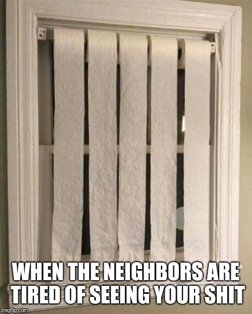 Quilted Southern | WHEN THE NEIGHBORS ARE TIRED OF SEEING YOUR SHIT | image tagged in toilet paper,blind,windows | made w/ Imgflip meme maker