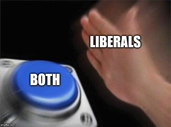 Blank Nut Button Meme | LIBERALS BOTH | image tagged in memes,blank nut button | made w/ Imgflip meme maker