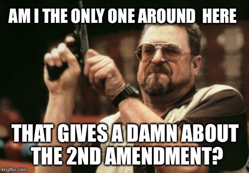 Am I The Only One Around Here Meme | AM I THE ONLY ONE AROUND  HERE THAT GIVES A DAMN ABOUT THE 2ND AMENDMENT? | image tagged in memes,am i the only one around here | made w/ Imgflip meme maker