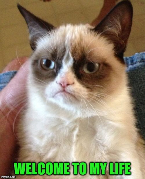 Grumpy Cat Meme | WELCOME TO MY LIFE | image tagged in memes,grumpy cat | made w/ Imgflip meme maker