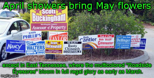 "April showers bring May flowers except in East Tennessee, where the multicolored ""Roadside Eyesores"" bloom in full regal glory as early as M 
